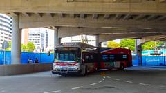 WMATA Metrobus 2009 New Flyer DE60LFA #5434