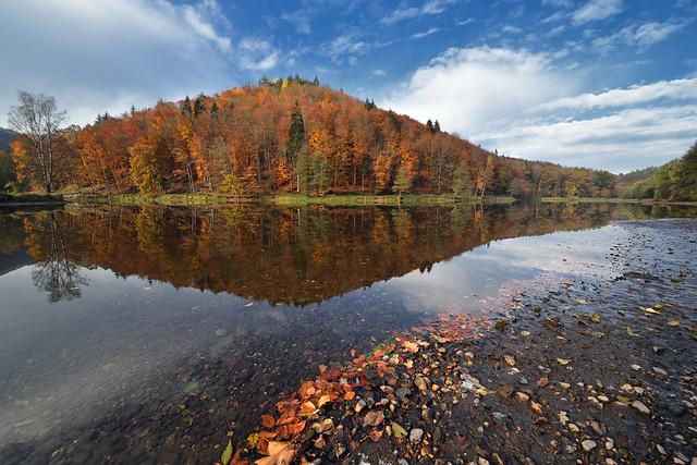 Couleurs d'automne sur l'étang 2