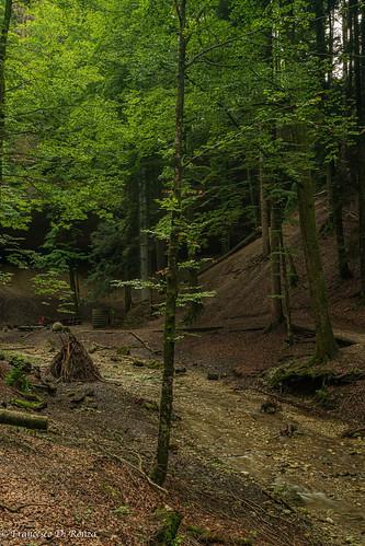 Wissengubel Höhle 5.)1908-5427