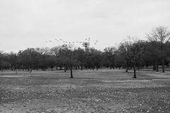 Flushing Meadows Park