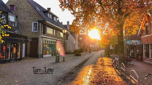 Herfst in Driebergen, Netherlands - 3074