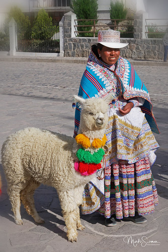 Woman with a lama I