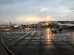 Sydney Airport international terminal at dusk