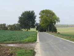 Ovillers-la-Boisselle: The D75 Pozières to Thiepval road (Somme) - Photo of Avesnes-lès-Bapaume
