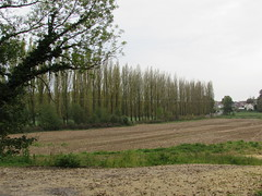 Aveluy: The D151 road (Somme)