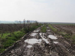 Pozières: The D73 road to Thiepval (Somme)