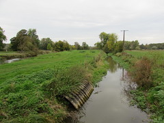 Aveluy: River Ancre (Somme)