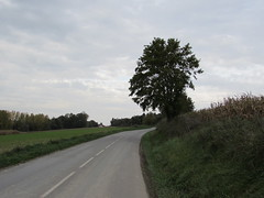 Authuille: The D151 road (Somme)