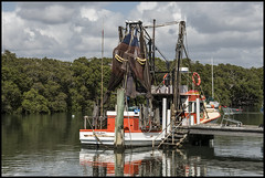 Cabbage Creek Trawler ready for a day out in bay=