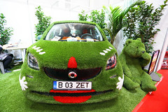 Mercedes Smart car covered in green grass at Bucharest Auto Show, 2019 SAB