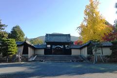 Zuishin-in, Yakuimon (Gate) -1 (November 2019)