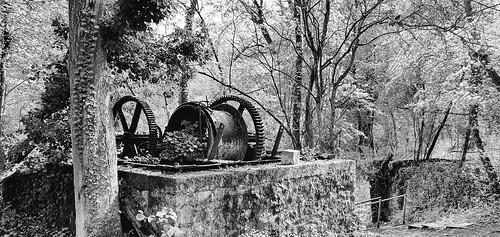 Abandoned winch