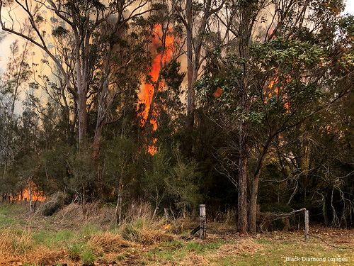The Fire Front Arrives - Timbertops Estate, Darawank, NSW