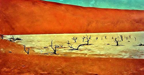 Namibia 2004, DeadVlei , Ton-Pfanne im Sossusvlei  , heiß und trocken ,  N3/12138