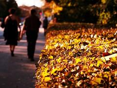 Herbstspaziergang München - Autumn walk in Munich