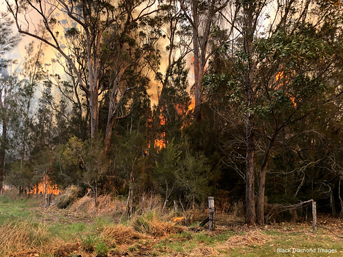 12.50pm The Fire Front Arrives - Timbertops Estate, Darawank, NSW