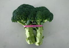 Two heads of broccoli with pink rubber band from grocery store