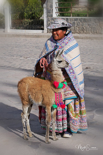 Woman with a baby lama