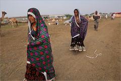 rabari women, jhalrapatan