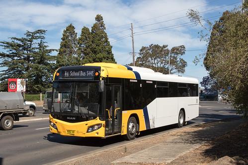 Shoal Bus 8985 MO MAN 19.320/Custom SB80 on a school run in Bomaderry