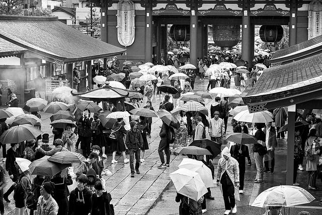 Umbrella Day in Tokyo