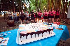 Aniversário de 1 ano Viva Junto