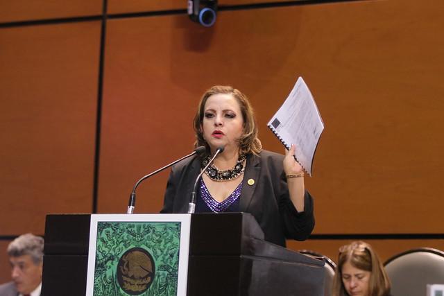 30/10/2019 Participación de la Dip. Yolanda Guerrero Barrera