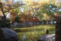 Japanese Garden meditation pool