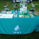 Upwell Fair Project Godwit Stand