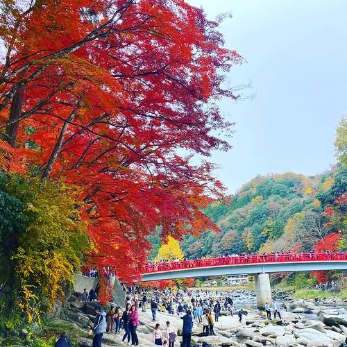 香嵐渓 Korankei