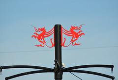16252-Cardiff