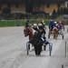 Kasaške dirke v Komendi 23.11.2019 Dirka enovpreg ponijev