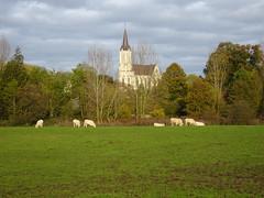 Bouvines- Eglise St Pierre 2019 (2)