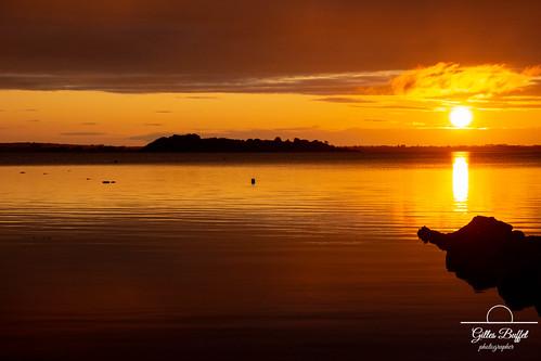 L'or du Connemara - Golden Connemara