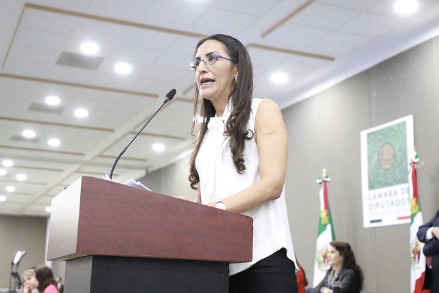06/11/2019 Tribuna Dip. Laura Imelda Pérez Segura
