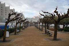 12757-Biarritz
