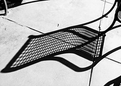 A Seat in the Shade