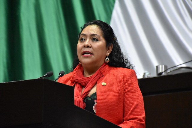 27/11/2018 Tribuna Dip. Alejandra Pani Baragán