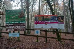 45133- Lascaux
