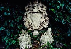 Slide copies August 1991, Salisbury, Wiltshire