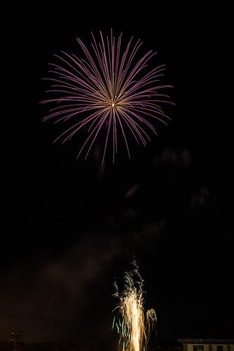 DAV_4408L Fireworks