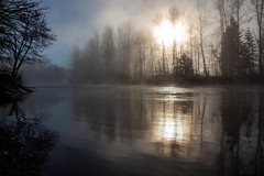 Foggy Middle Fork of the Willamette