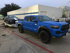 TRD Pro Taco towing Shelby GT350