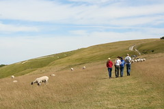 Uffington White Horse Hill credit Sarah Wright