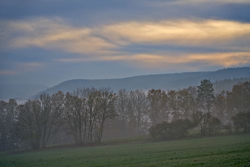 Misty Afternoon