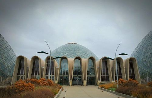 Mitchell Domes