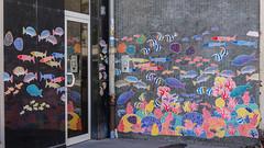 Rue du jeu-des-enfants #7 - Aquarium d'extérieur