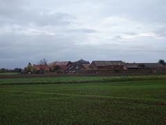 Houplin-Ancoisne, la  Pouillerie  (4)