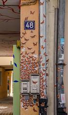 Rue du jeu-des-enfants #3 - Papillons par milliers