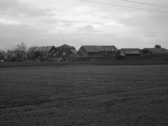 Houplin-Ancoisne, la  Pouillerie  (3)